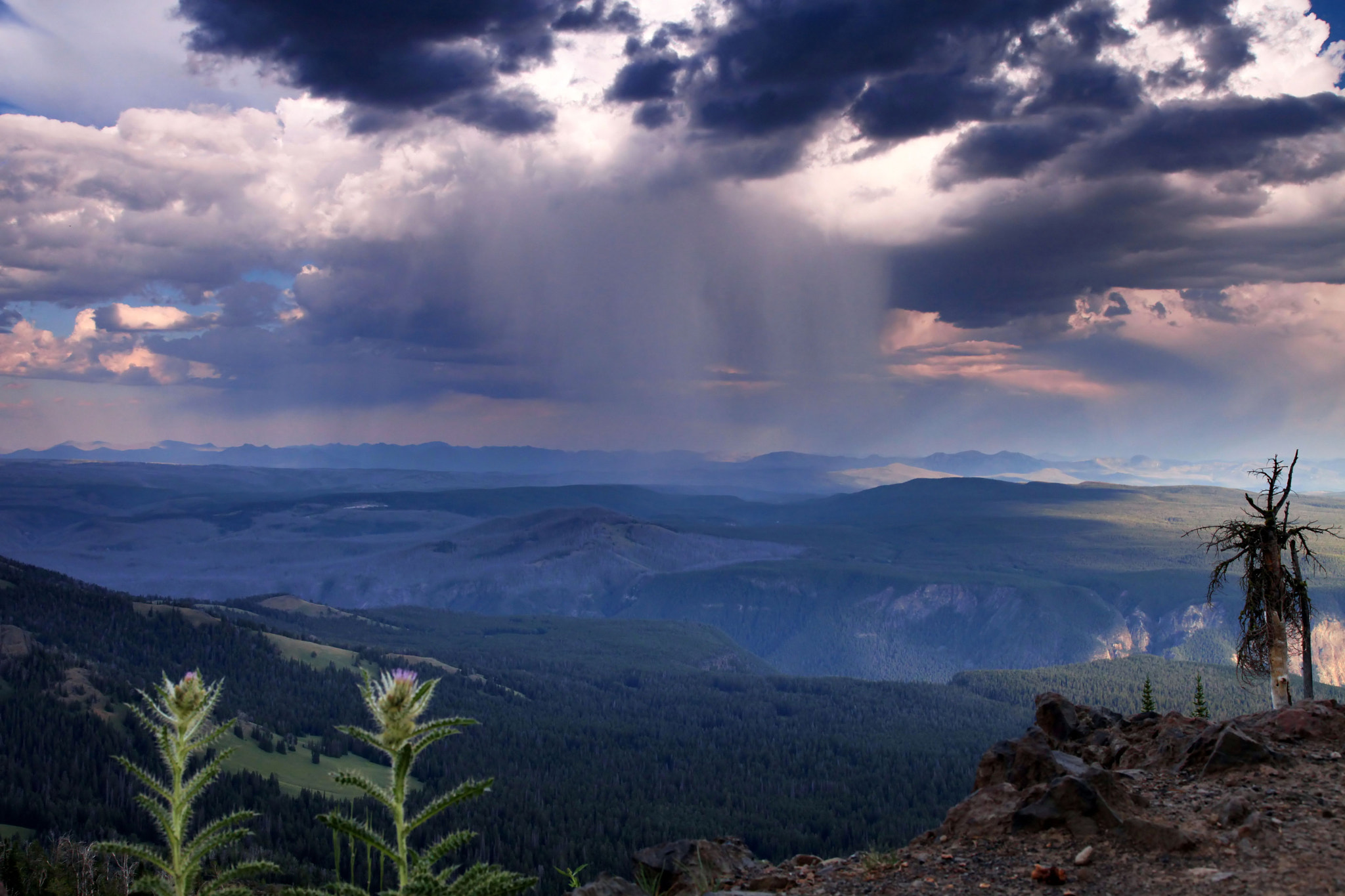 Photograph Rainstorm from Mount Washburn by Larry Herscovitch on 500px