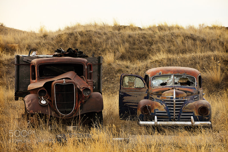 Photograph Rotting Jalopies by Todd Klassy on 500px