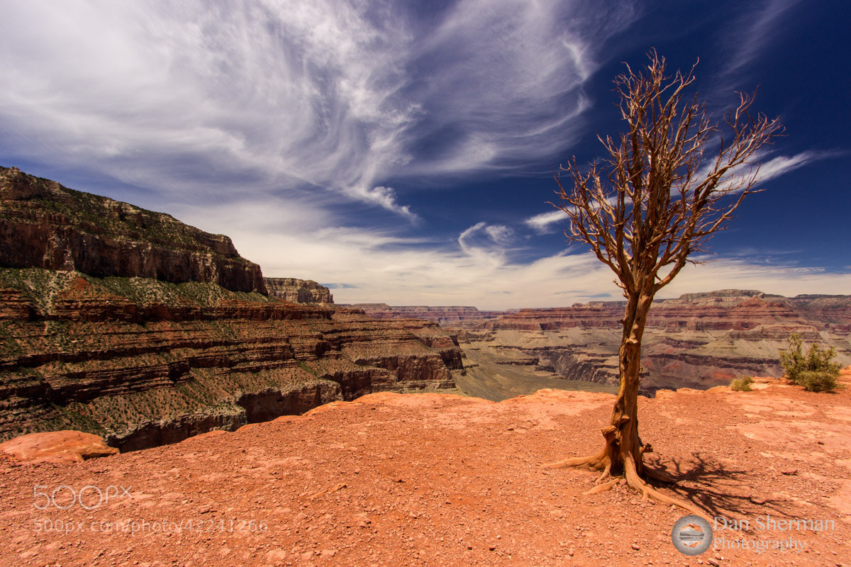 Photograph Grand View by Dan Sherman on 500px