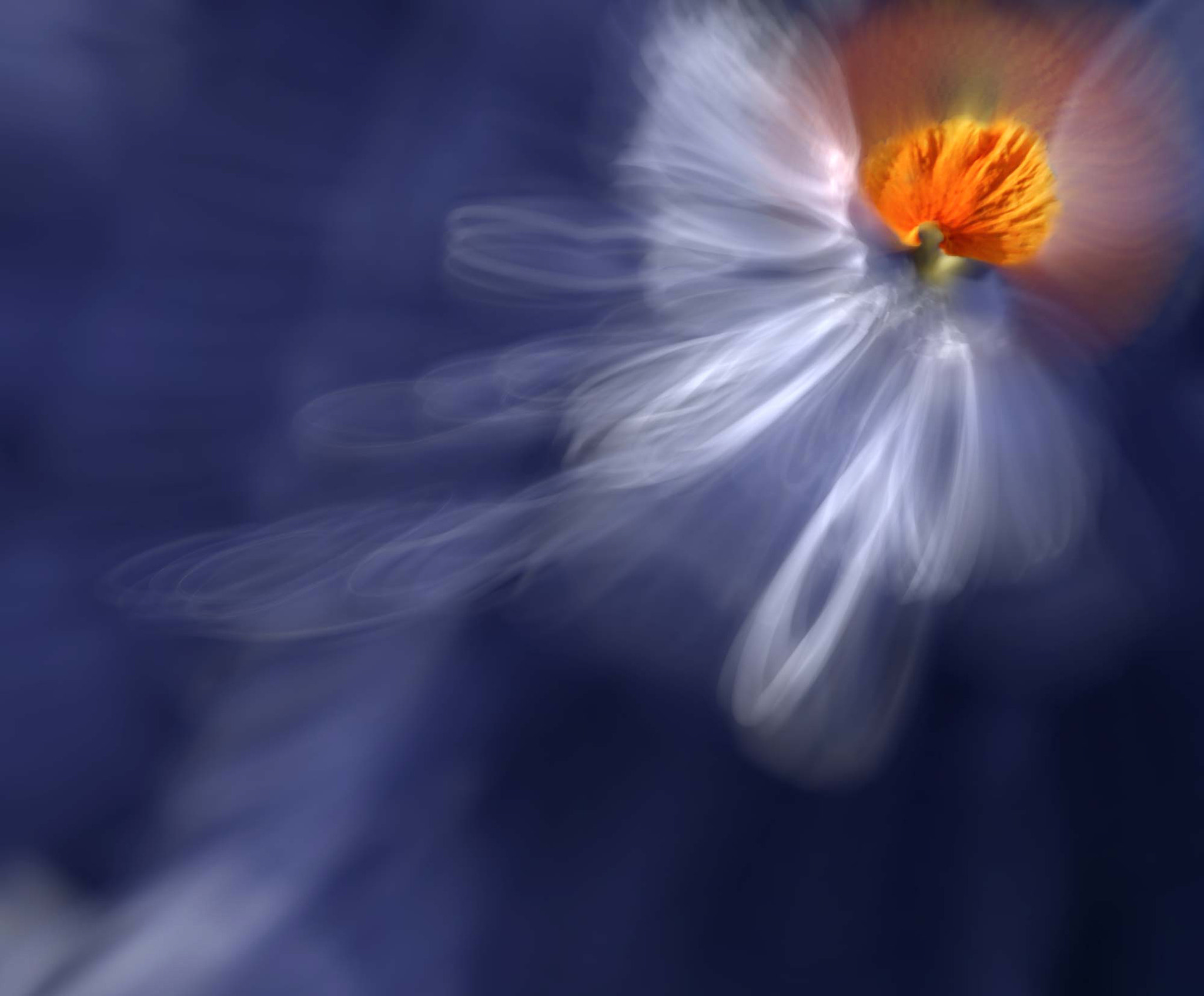 Photograph Here And Now ♥ Unconditional Love by Josep Sumalla on 500px