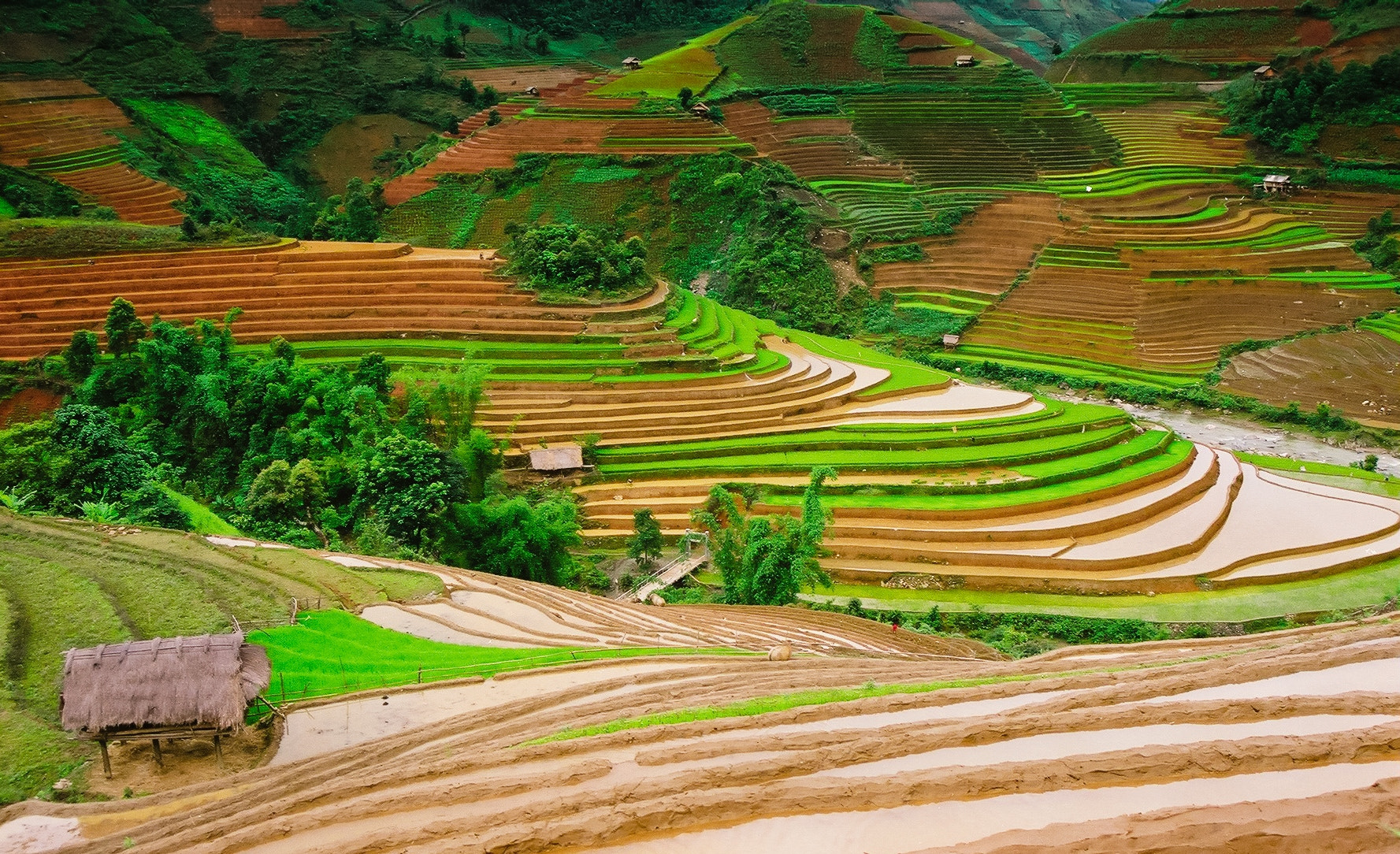 Photograph Rice terraces by hai nguyen on 500px