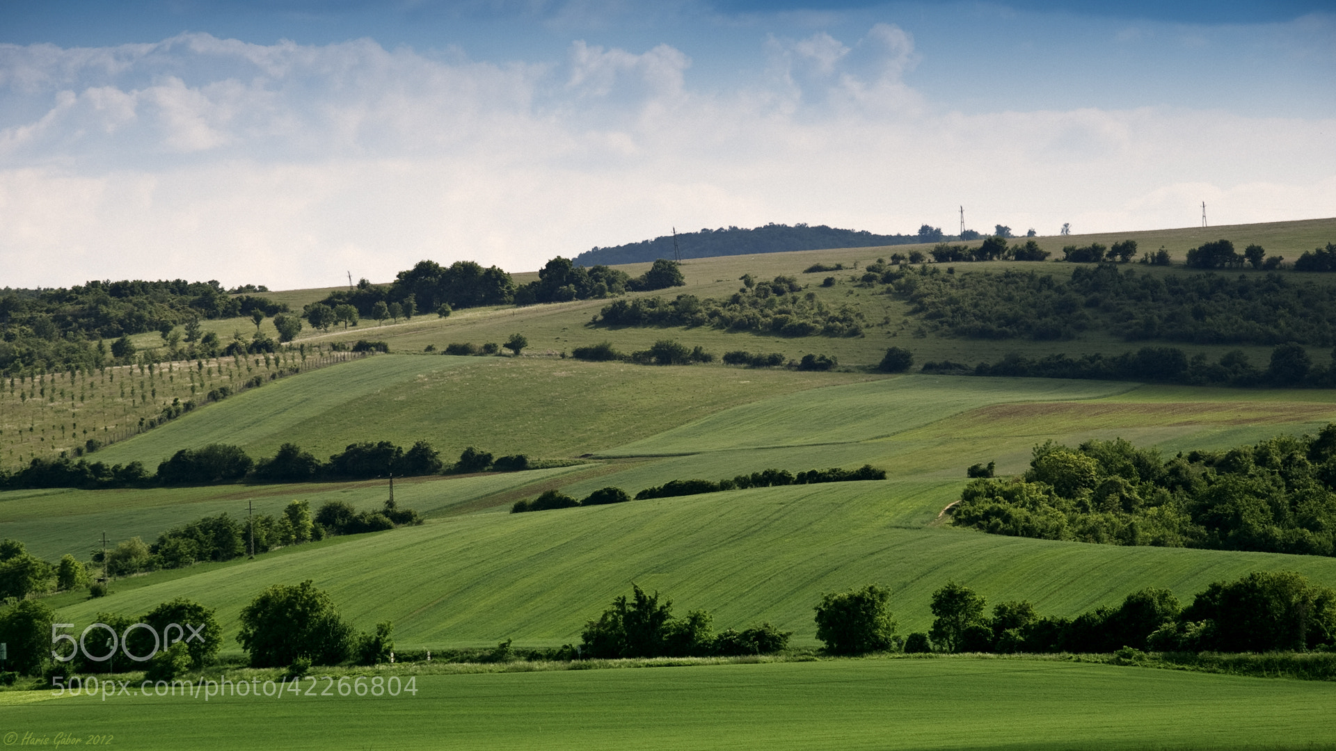 Photograph Green fields by HGL _Photo on 500px