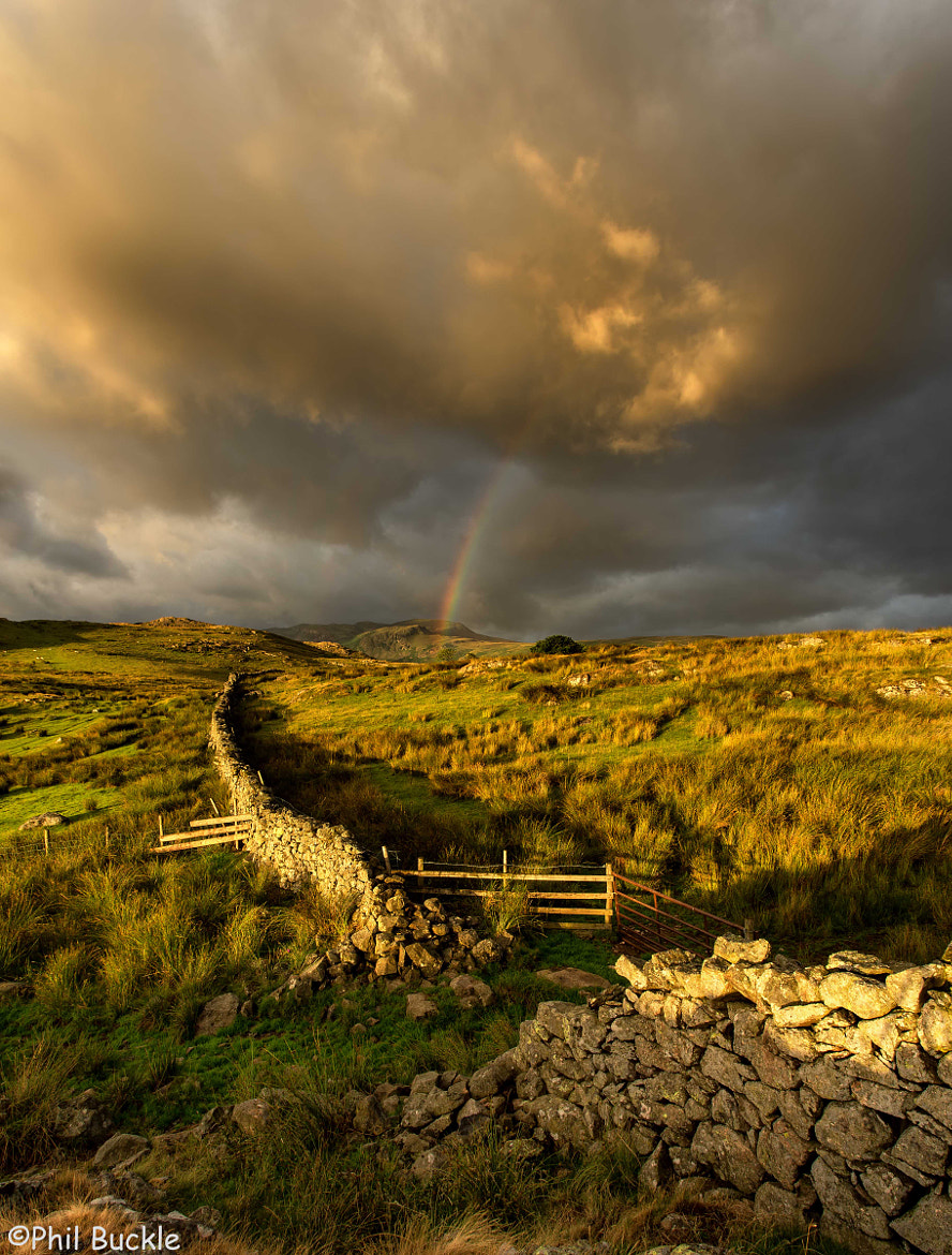 Photograph Tewet Rainbow by Phil Buckle on 500px