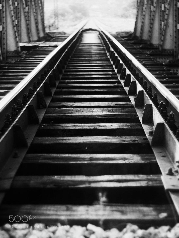 Photograph Tracks 01 by Mihailo Radičević on 500px