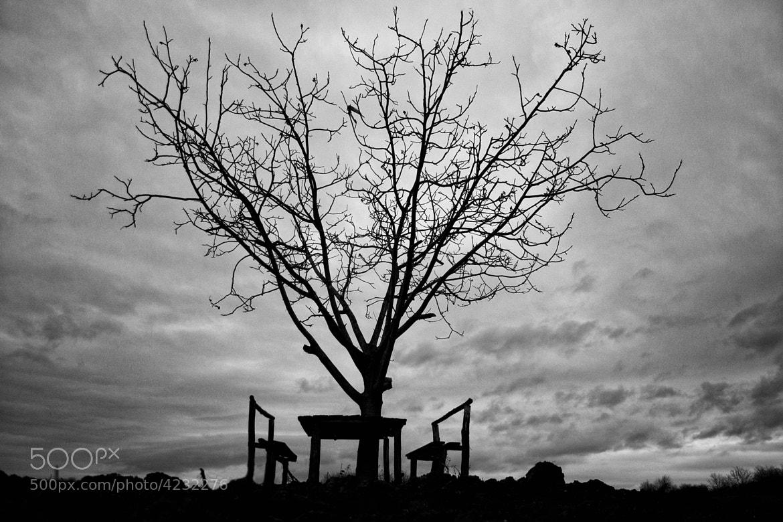Photograph Mood 01 by Mihailo Radičević on 500px