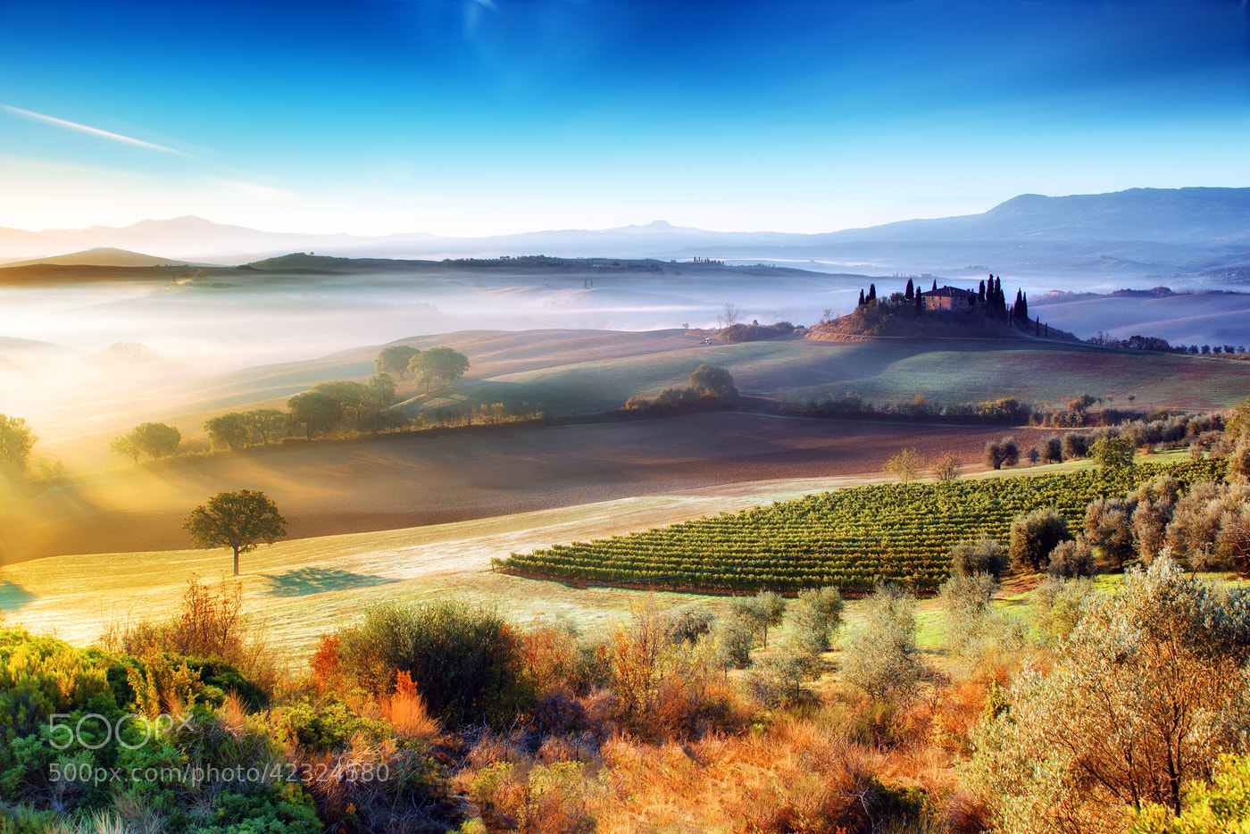 Photograph Val d'Orcia by Adnan Bubalo on 500px
