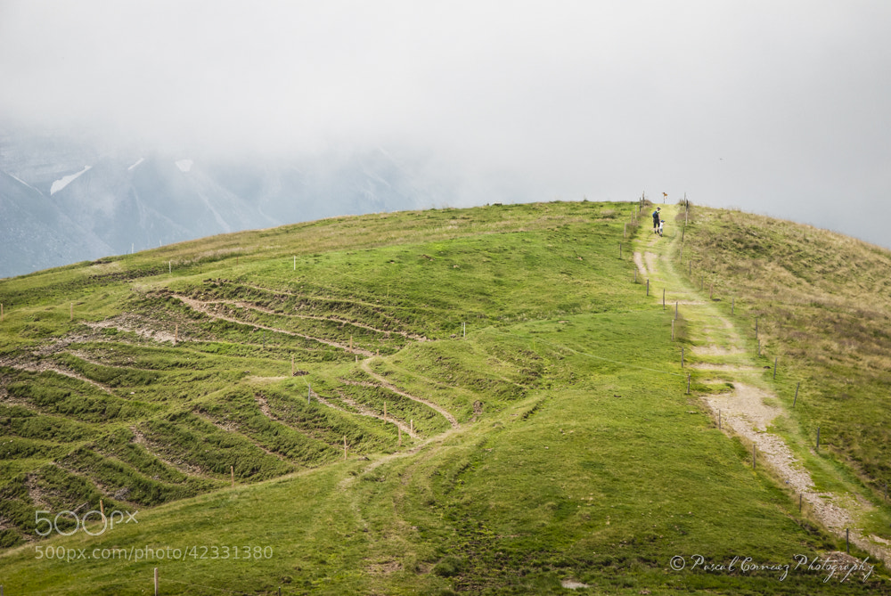 Photograph A path to the clouds by Mou des oreilles on 500px
