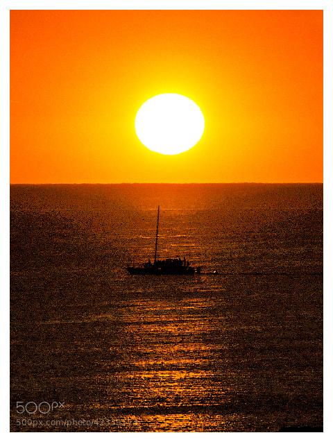 Photograph Chau sol... by Kot Basilio on 500px