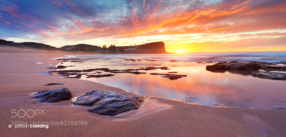 Photograph Endless Summer by Jarrod Castaing on 500px