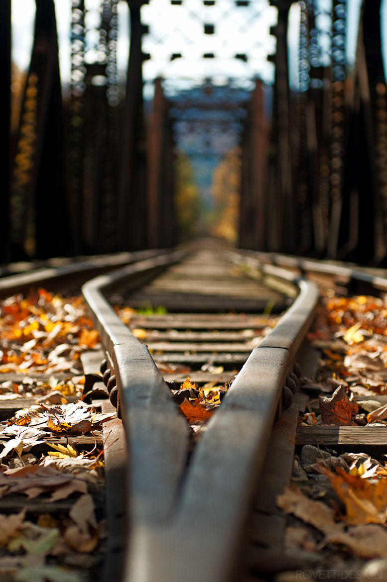 Photograph Rail by Stephen Rovetti on 500px