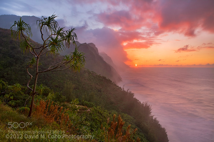 Photograph Napali by David Cobb on 500px