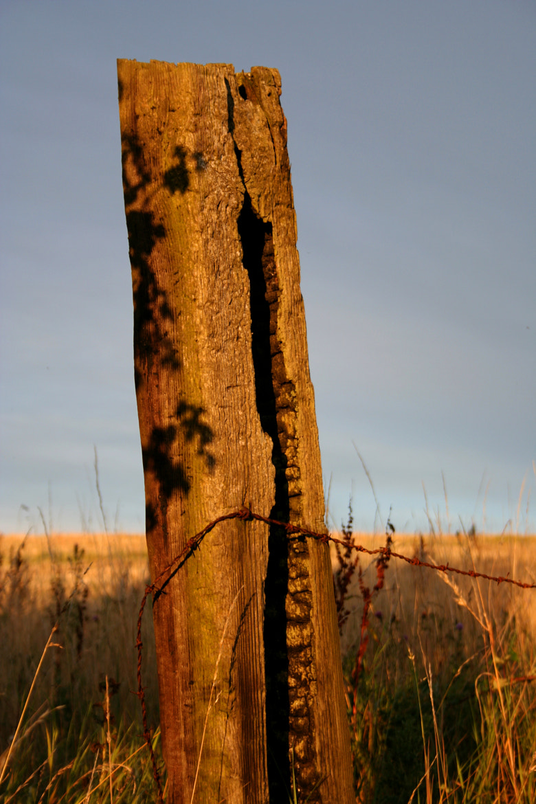 Photograph Old Field Post by Khym  Harrison on 500px