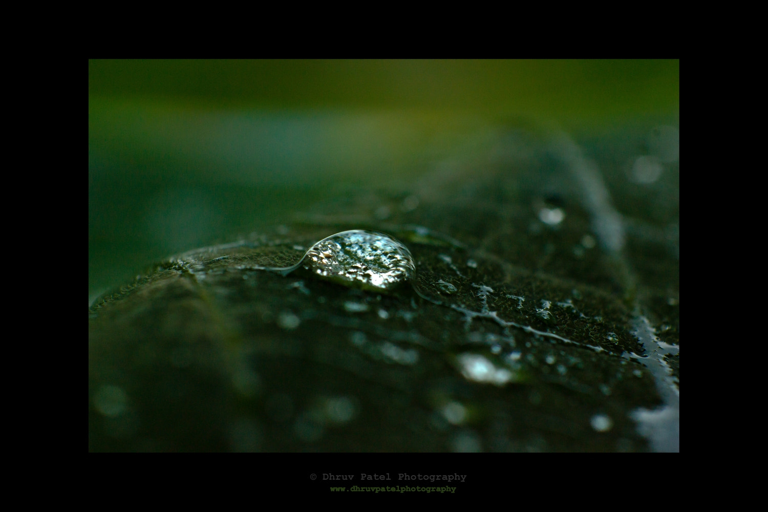 Photograph Crystal Drop on Leaf by Dhruv Patel on 500px