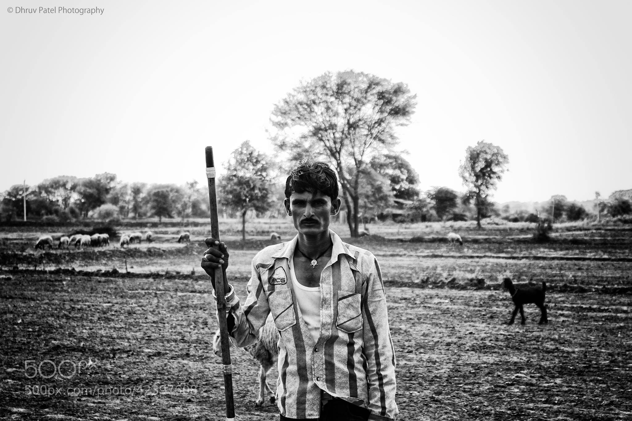 Photograph A Shepherd by Dhruv Patel on 500px