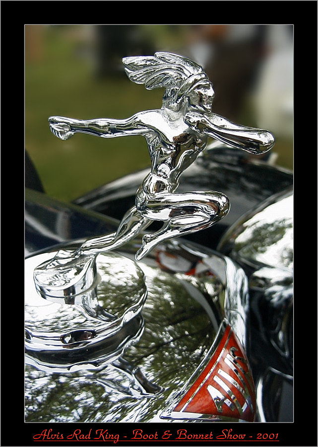 Alvis Bonnet Art - Running Brave