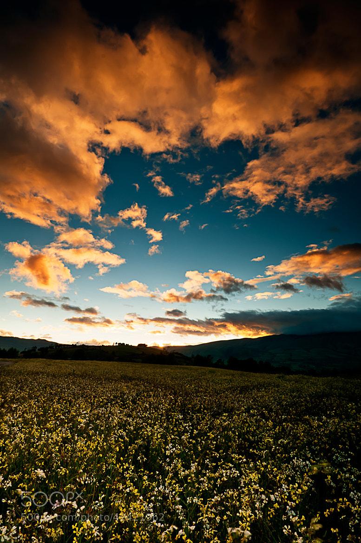 Photograph Infinity by Fernando Salas on 500px