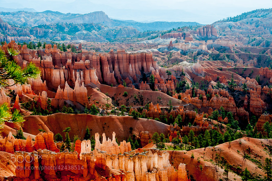 Photograph Bryce by F Jin on 500px
