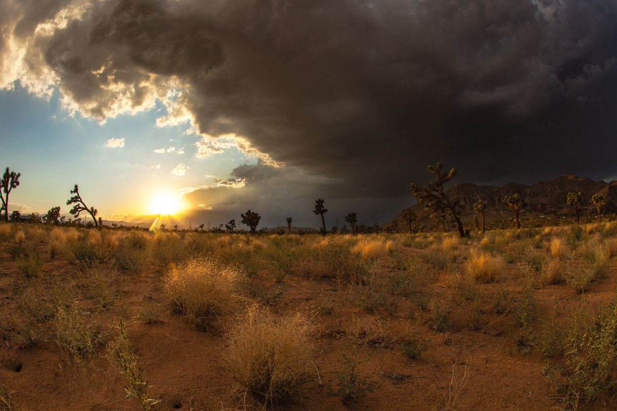 Photograph Black Cloud Over Goat Mountain by Shane Lund on 500px