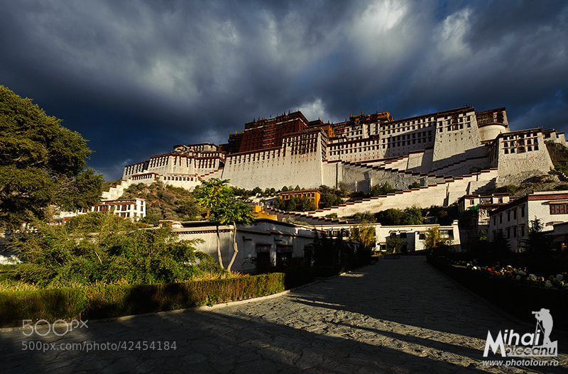 Photograph Potala Palace by Mihai Moiceanu on 500px