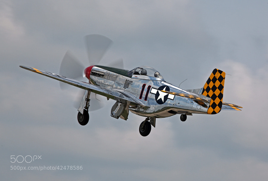 P-51D Mustang under full power reaching for altitude at Air Venture 2013.