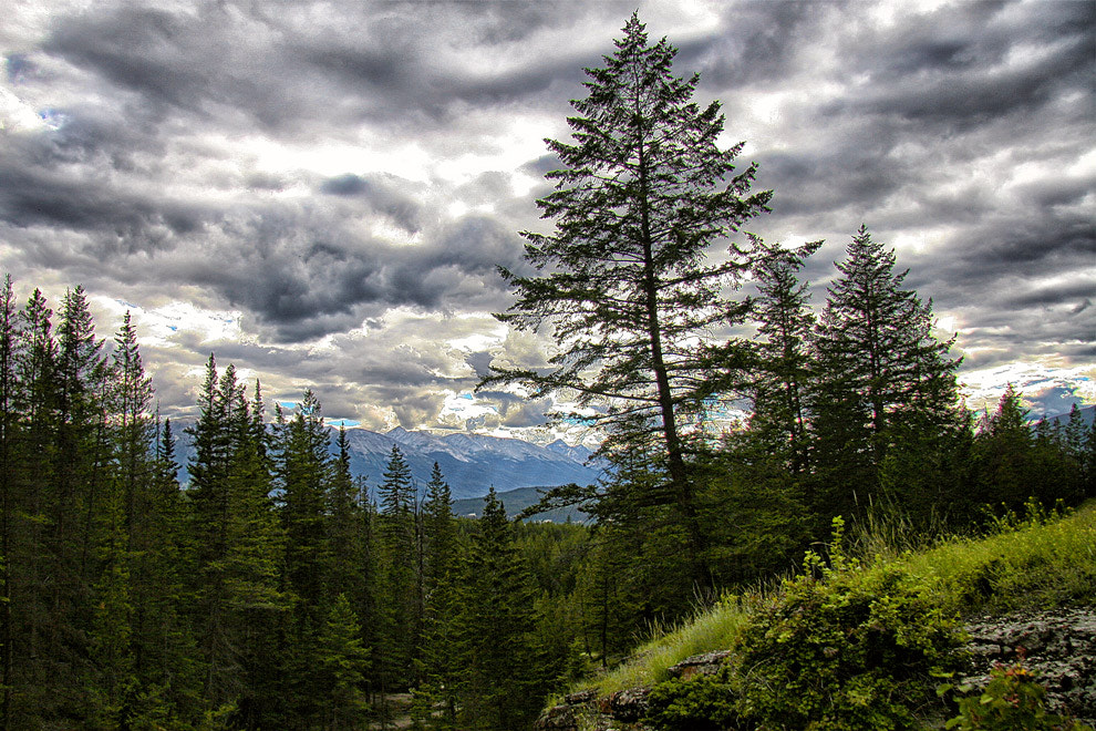 Photograph Moods of Jasper by Greg McLemore on 500px