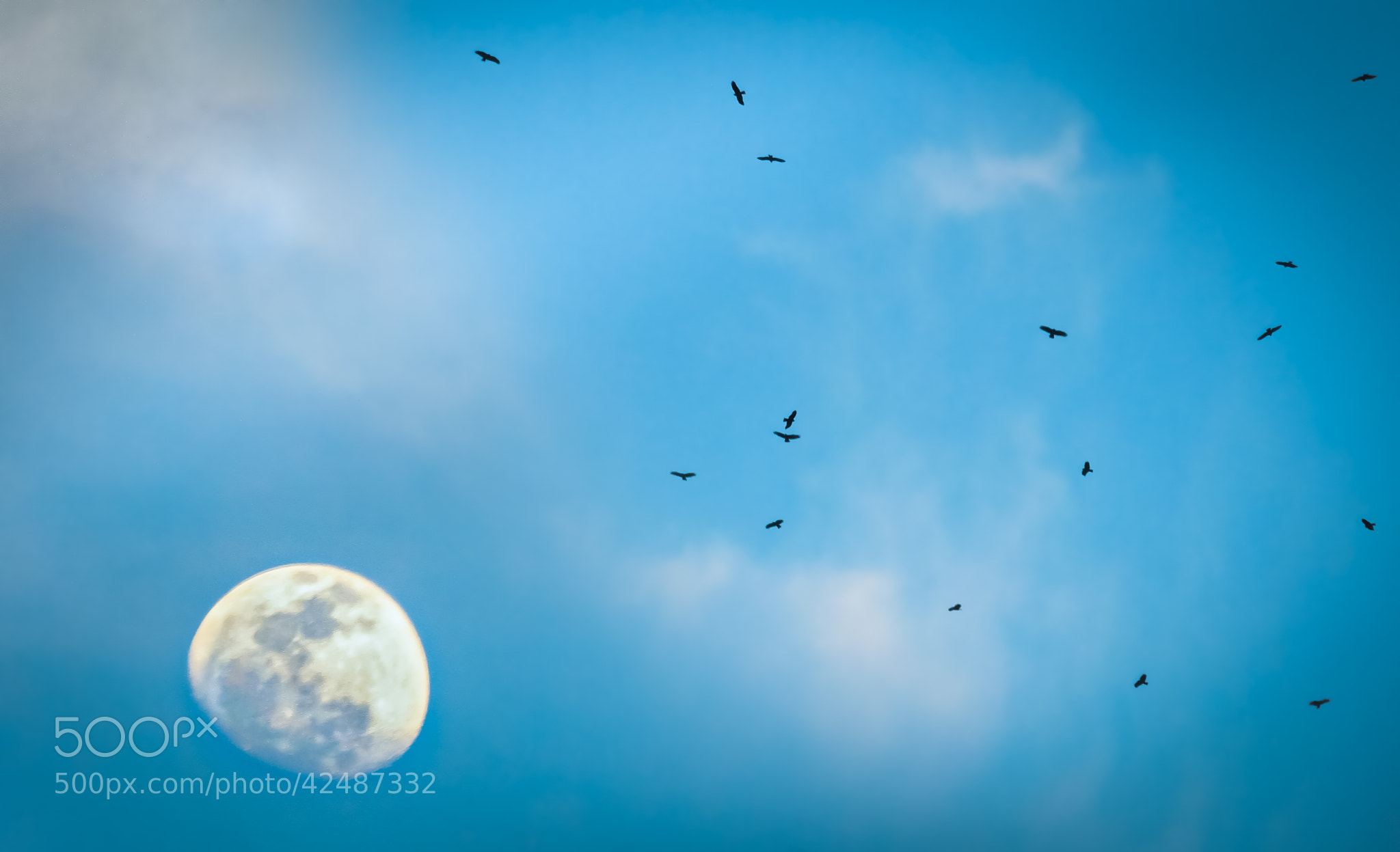 Photograph The moon fly by Farhan Ayon on 500px