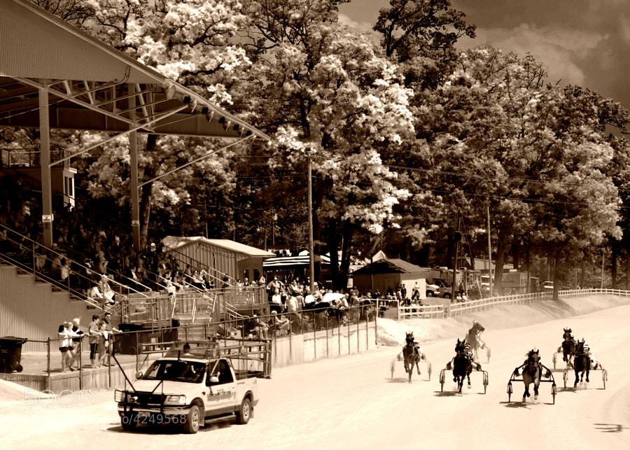 Knox County Fair Harness Racing,Mt. Vernon,Ohio