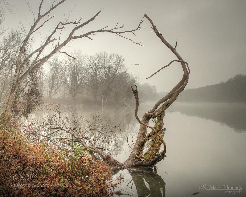 Photograph River Dancer by J. Mark Edmonds on 500px