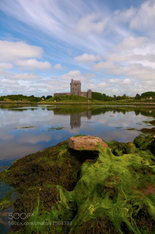 Photograph Dunguaire Castle by Desmond Daly on 500px