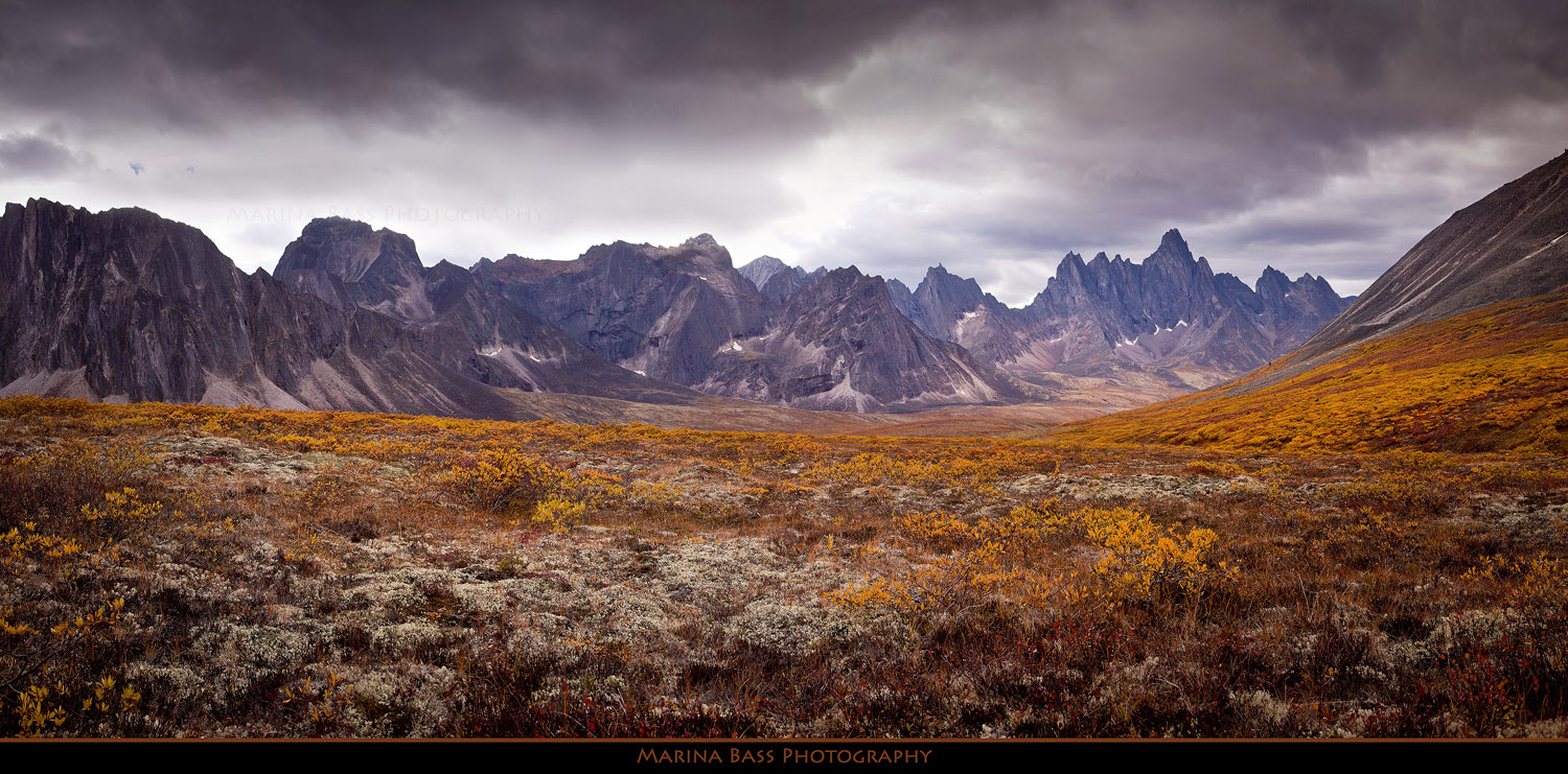 Photograph Tombstone Valley by Marina Bass on 500px