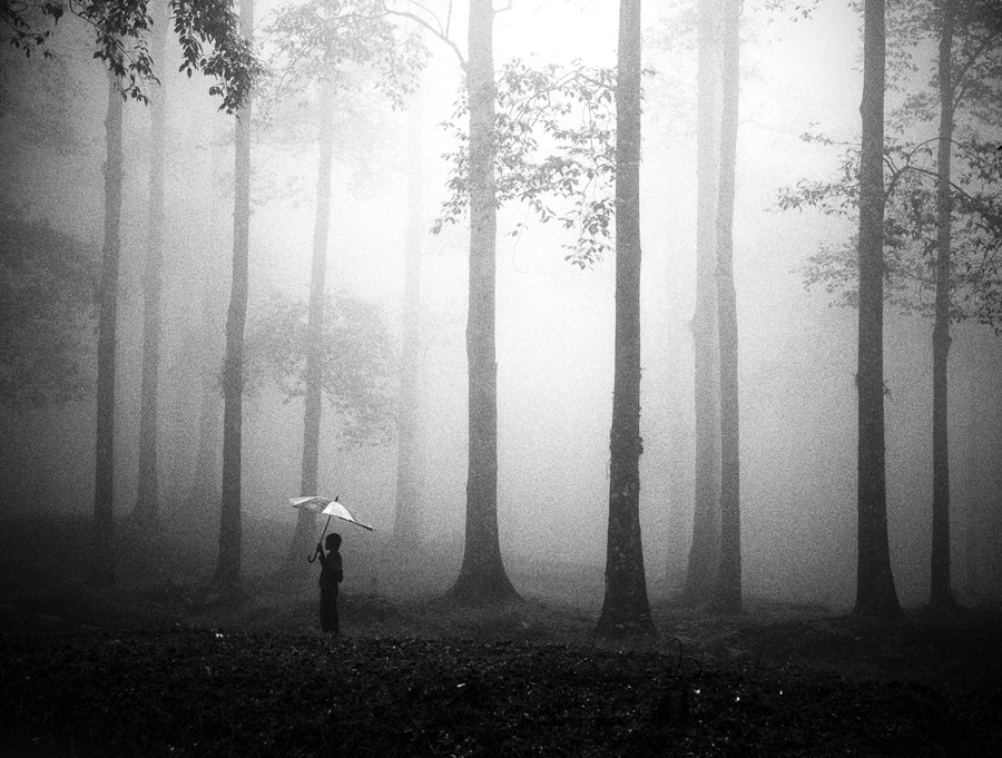 Photograph After The Rain by Hengki Lee on 500px
