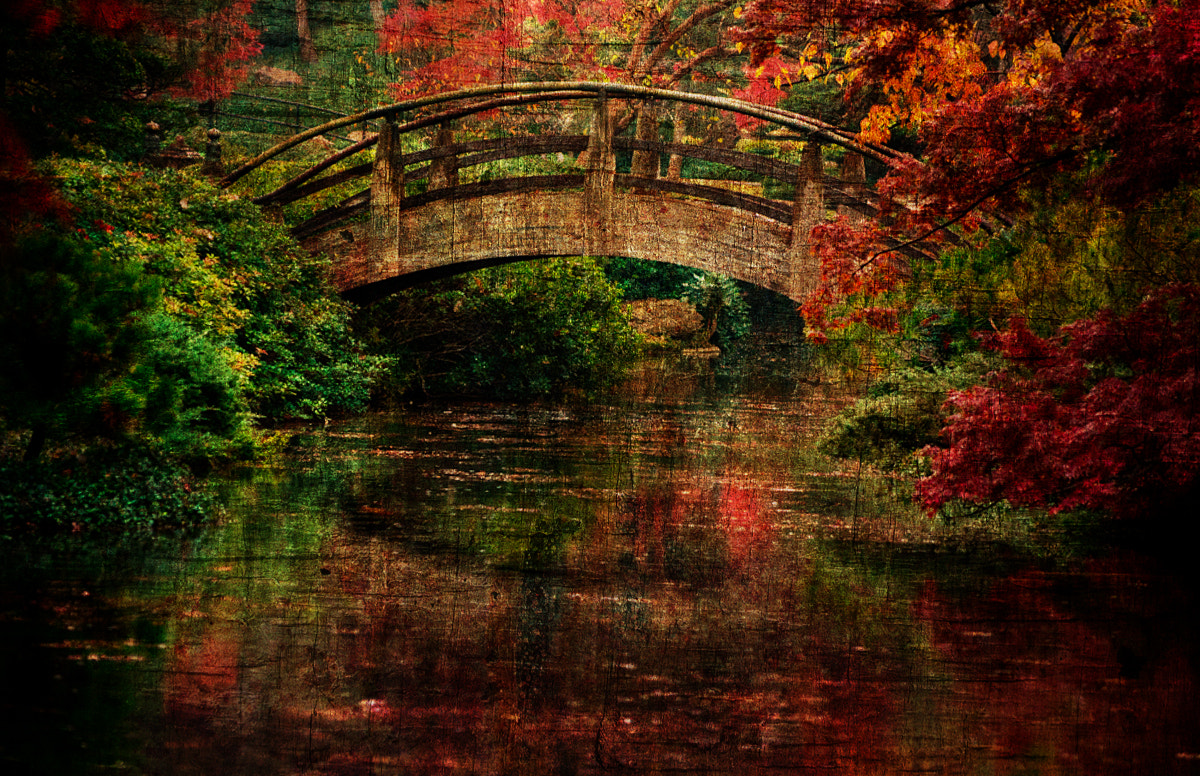 Photograph Moon Bridge in the Fall by Darrin Snyder on 500px