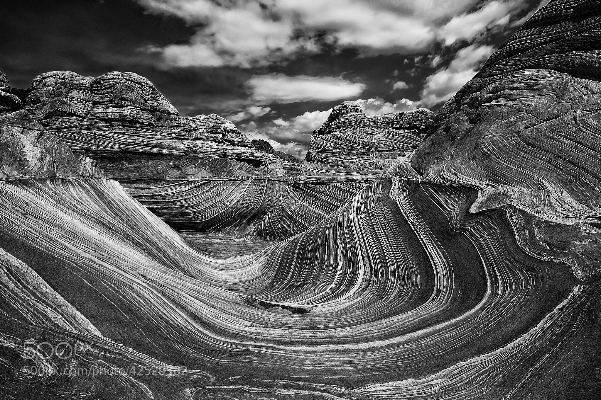Photograph Bright Sunny by Danilo Faria on 500px