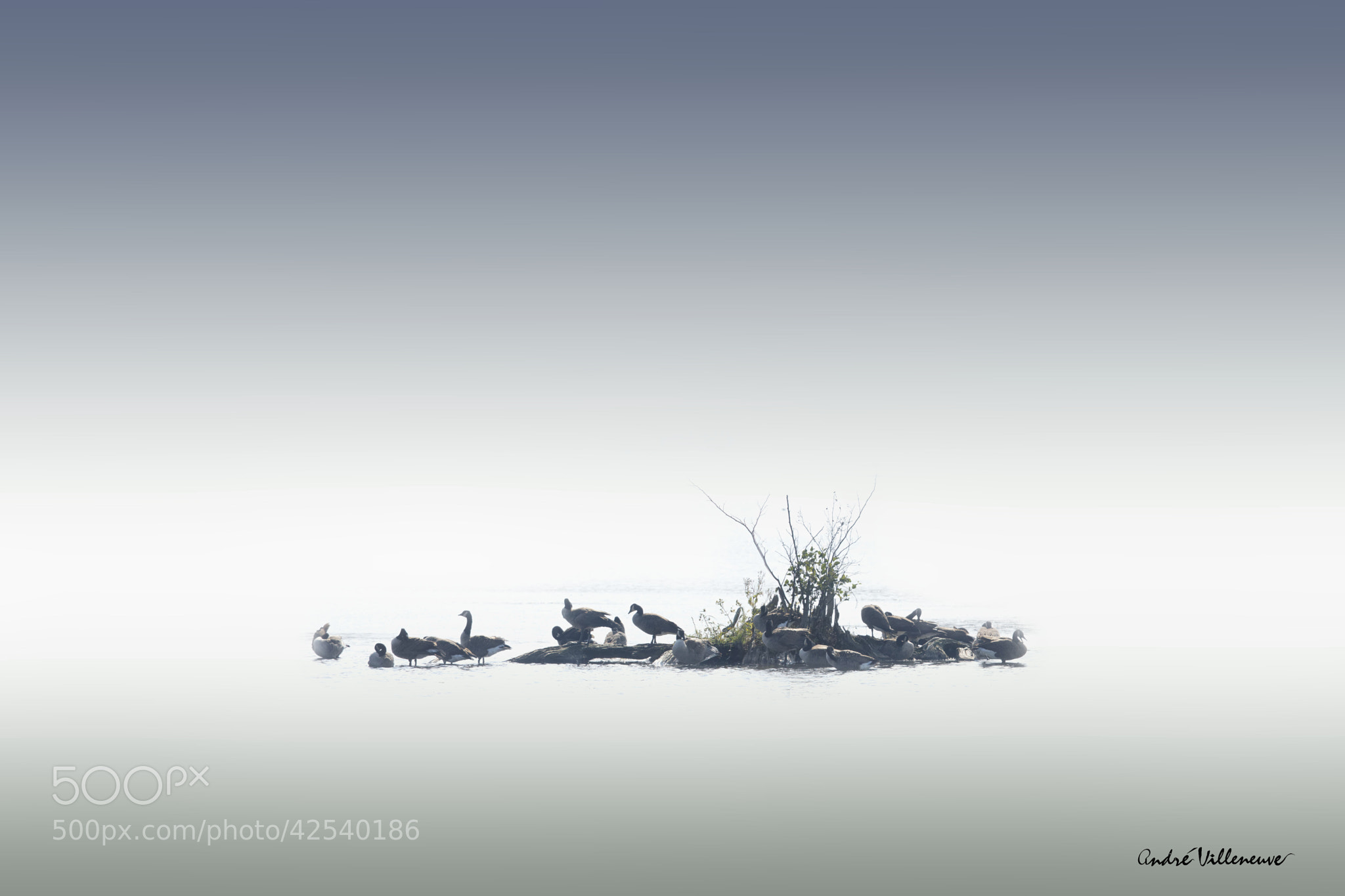 Photograph Duck island by Andre Villeneuve on 500px
