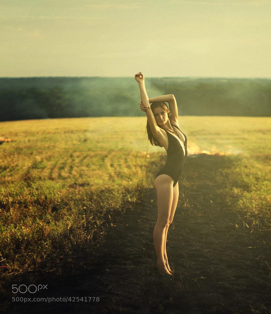 Photograph Swallow by Vinni Vinnyk Igor on 500px