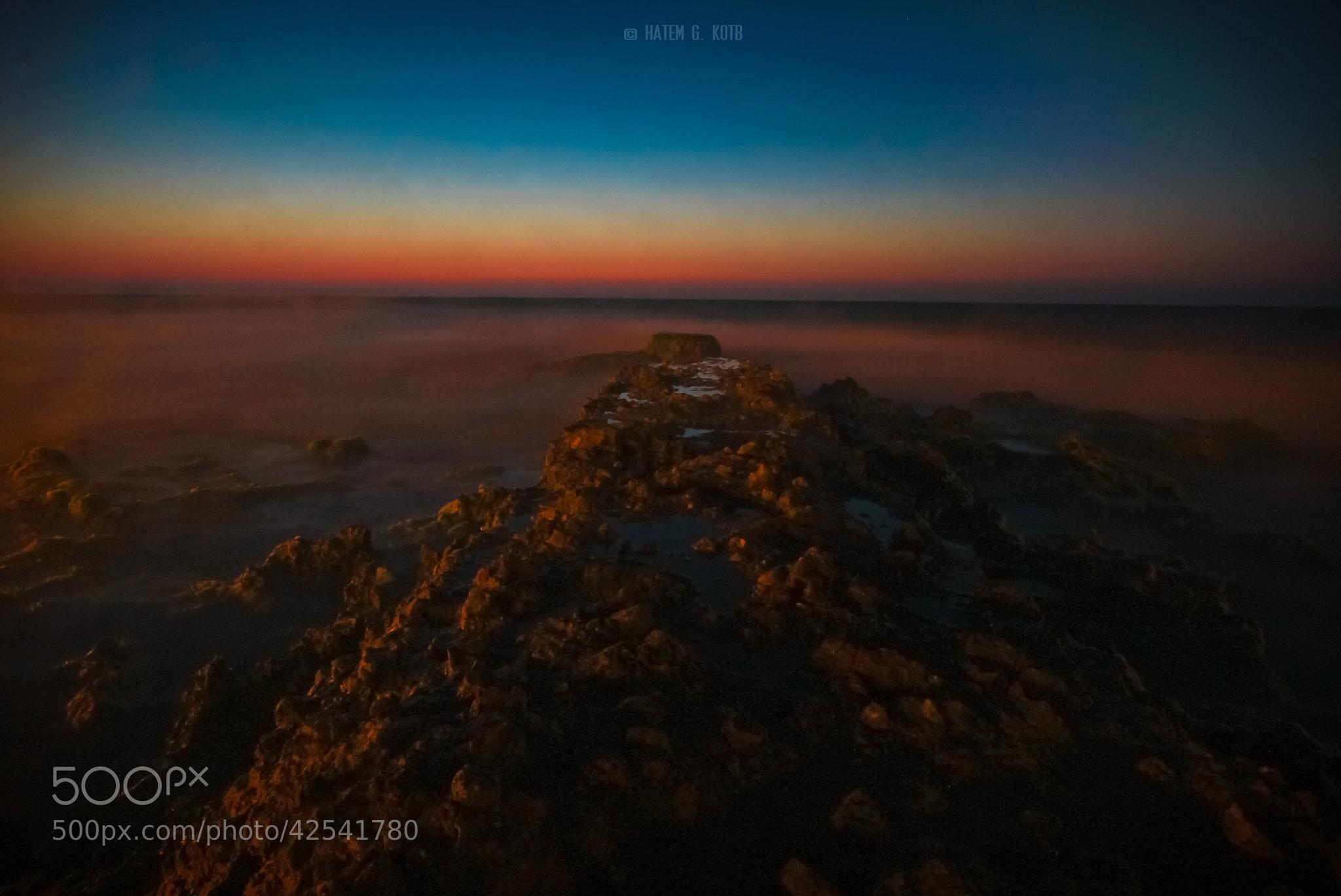 Photograph Splendor by Hatem Kotb on 500px