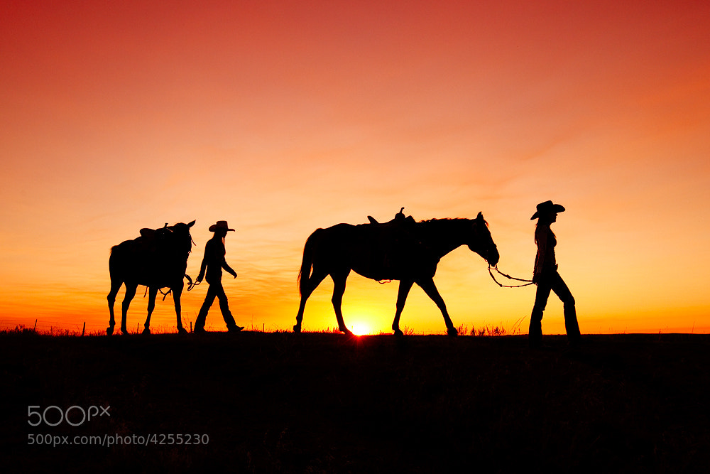 Photograph Off to the Barn by Todd Klassy on 500px