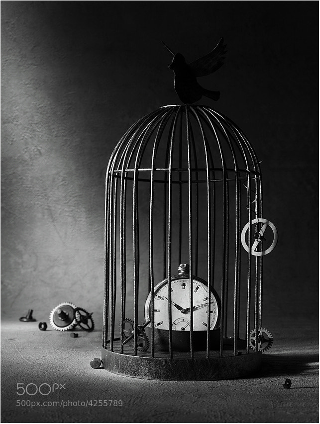 Photograph Stop the time by Victoria Ivanova on 500px