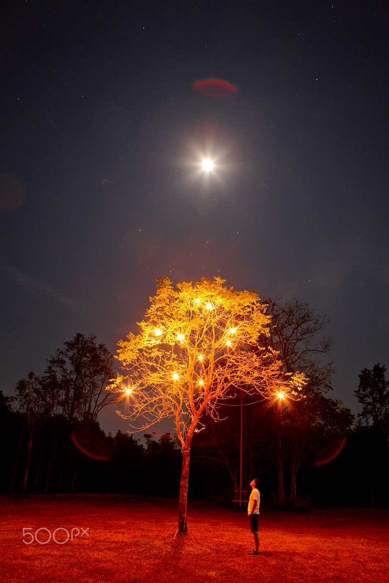 Photograph Warmth in the night by Paron Chatakul on 500px