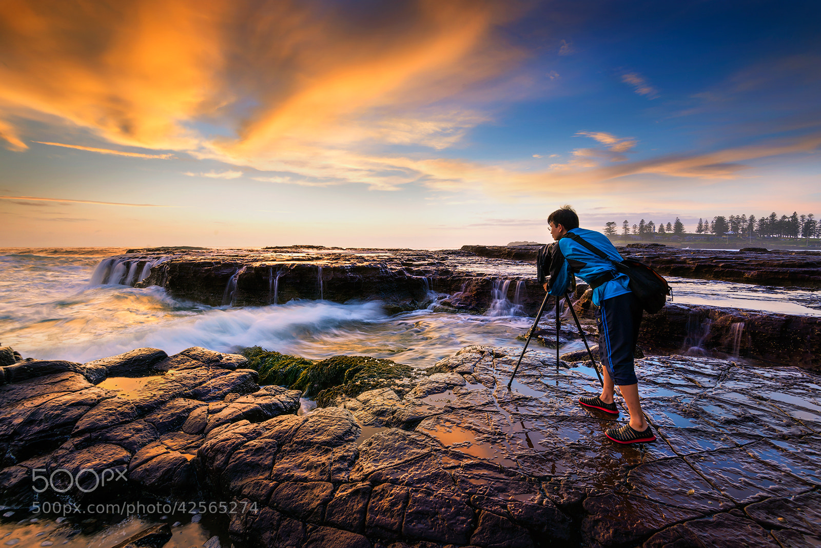 Photograph The Boss by Goff Kitsawad on 500px