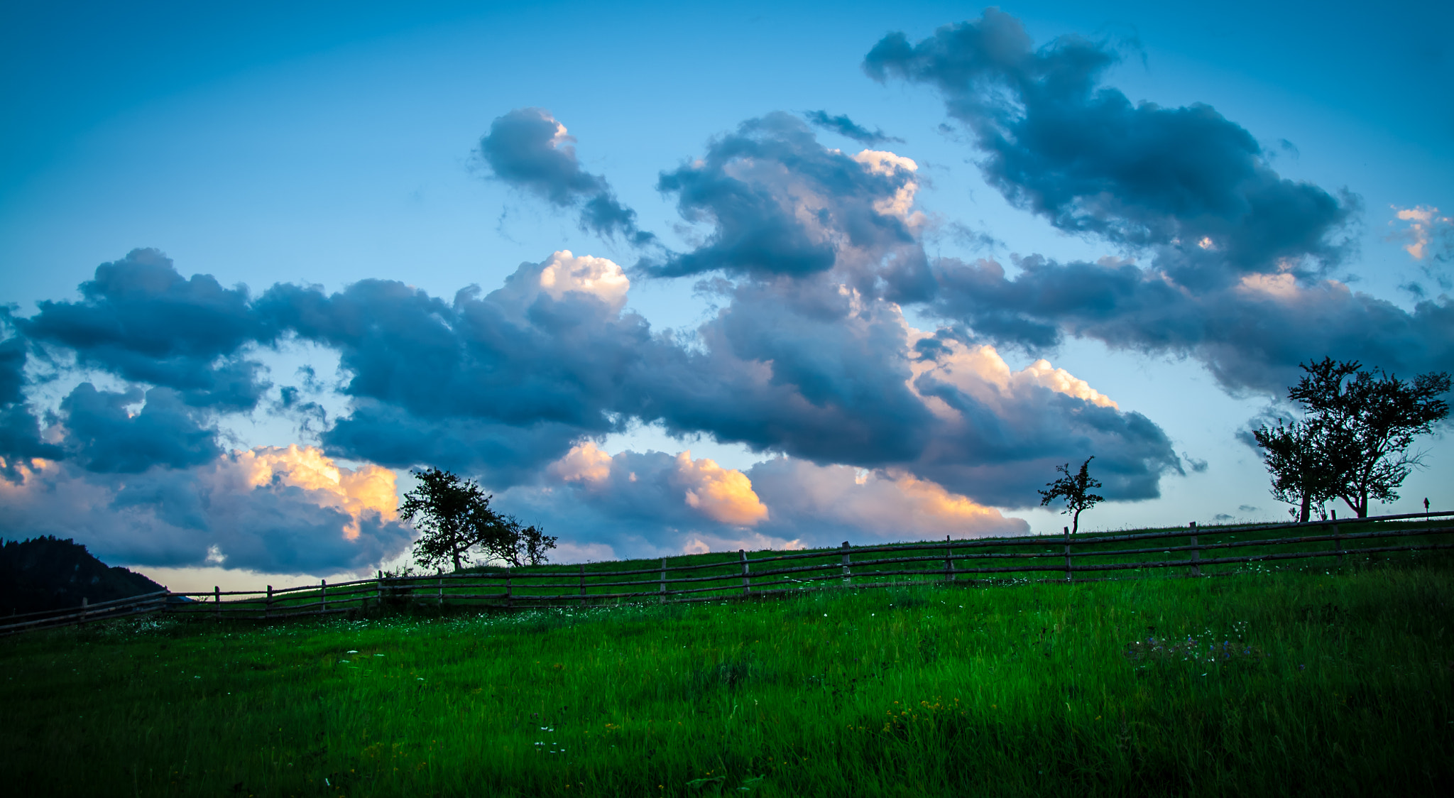 Photograph Grass & clouds by Andi Cretu on 500px