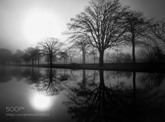 Photograph The Park by GavinGordon on 500px