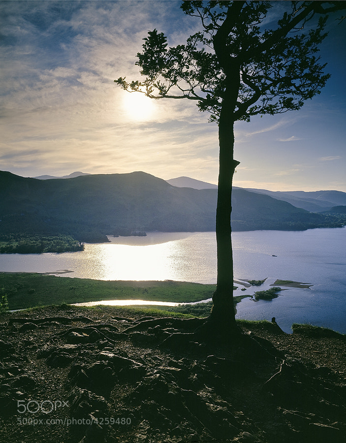 DERWENT WATER FROM LODORE WOOD THE LAKE DISTRICT ENGLAND