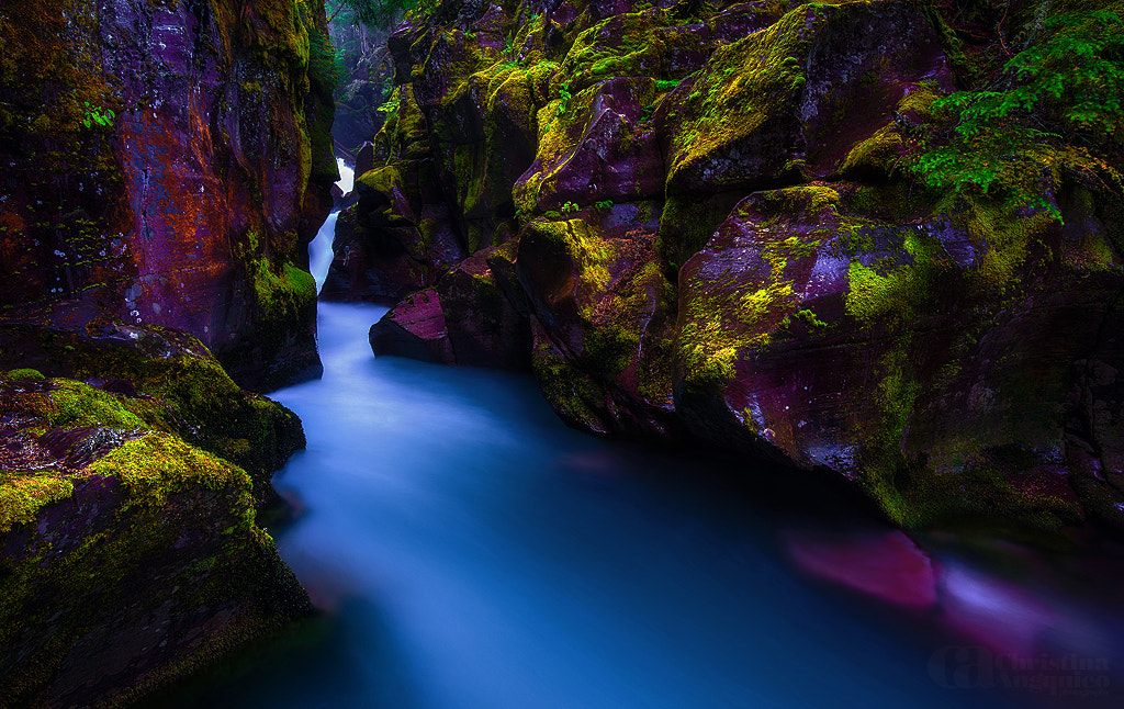Photograph Avalanche Canyon by Christina Angquico on 500px