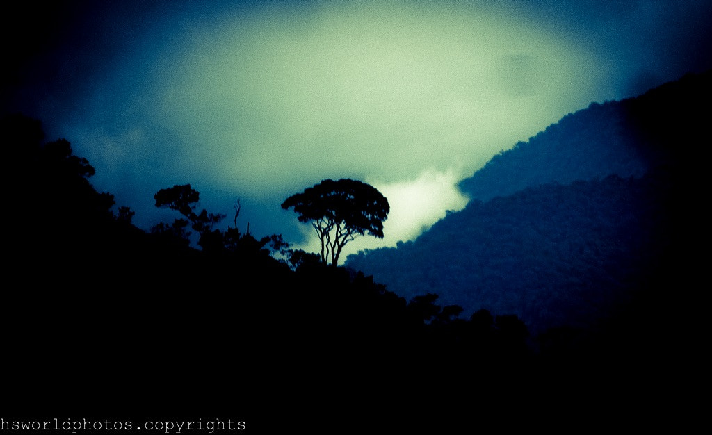 Photograph mountains and lonely tree by henrique  santos on 500px
