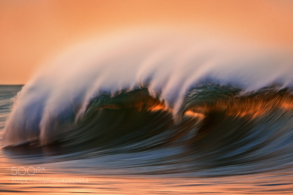 Photograph MG_6894 Orange on Blue by David Orias on 500px