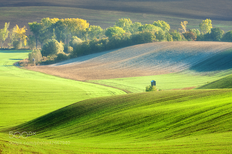 Photograph Pulpits in the morning by Marcin Sobas on 500px