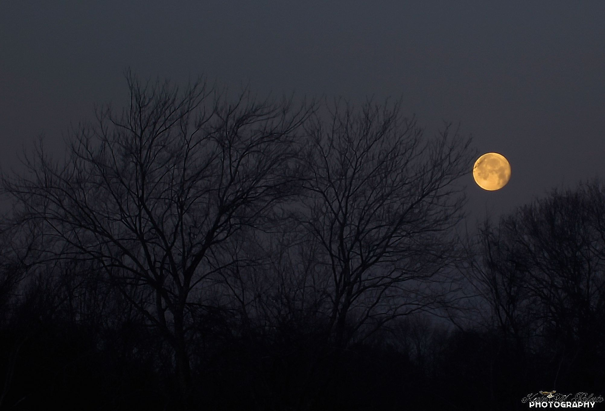 Photograph Moon setting by Kevin Roberto on 500px