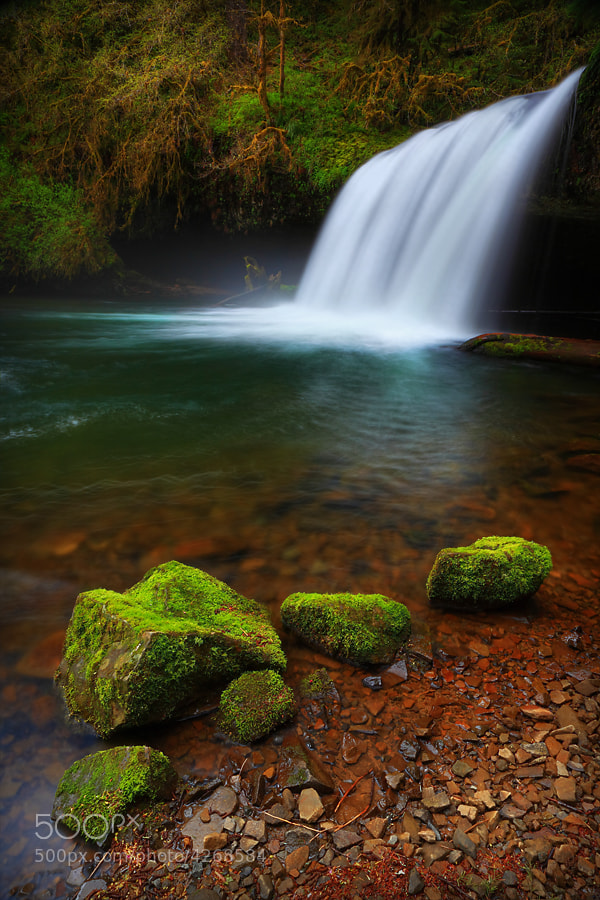 Photograph Front Row Seats by Tula Top on 500px