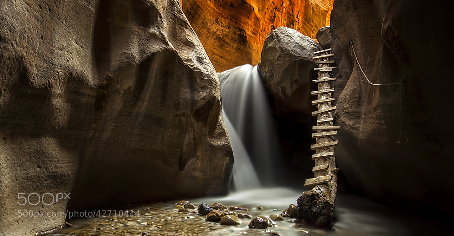 Photograph Is There Anybody Out There?? by Danilo Faria on 500px